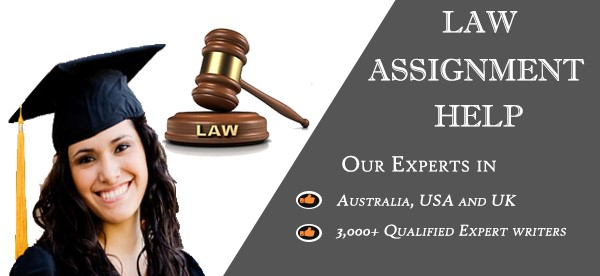 Law Assignment Help Is All That A Student Need - Blog